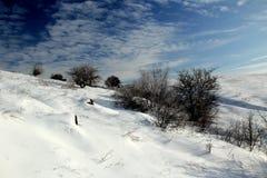 冻沙漠 库存照片