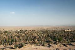 沙漠garmeh伊朗横向绿洲 免版税图库摄影