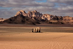 沙漠giordania兰姆酒旱谷 免版税图库摄影