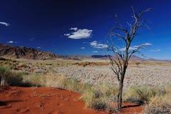 沙漠namib纳米比亚 免版税库存照片