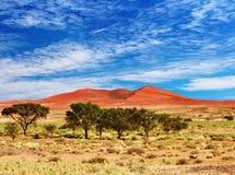 沙漠namib纳米比亚sossufley 库存照片