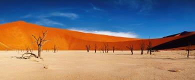 沙漠namib纳米比亚sossusvlei 库存图片