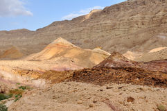 沙漠negev 免版税库存照片