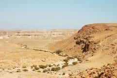 沙漠negev 库存照片