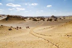 沙漠Road.Fuerteventura 库存照片