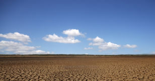 沙漠sarigua 免版税图库摄影
