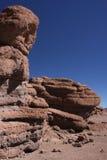 沙漠siloli 图库摄影