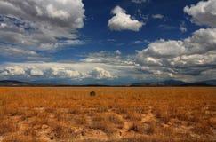 沙漠skys 库存图片