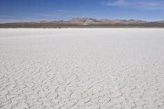沙漠te 库存照片
