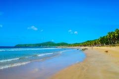 沙滩、波浪、蓝色绿松石海小山、蓝天和密林 免版税库存照片