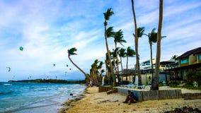 沙滩、蓝色海、波浪和棕榈树可弯由流程猛烈的海风 免版税库存图片