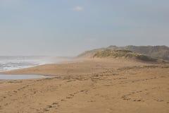 沙滩和有薄雾的波浪 免版税库存照片