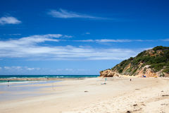 沙滩在新南威尔斯 图库摄影