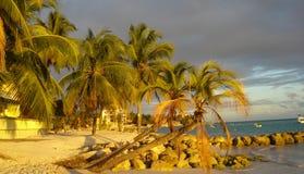沙滩巴巴多斯黄昏 免版税库存照片