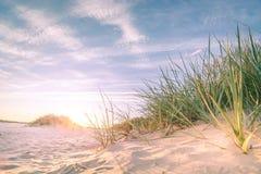 沙滩onn日落 免版税图库摄影
