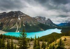 沛托湖全景在加拿大落矶山 图库摄影