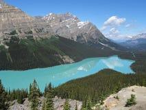 沛托湖,有反射的,加拿大 库存图片