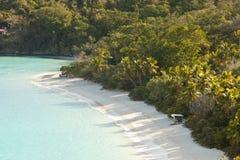 没有人的树干海湾 免版税库存图片