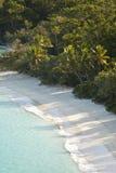 没有人的树干海湾 免版税库存照片
