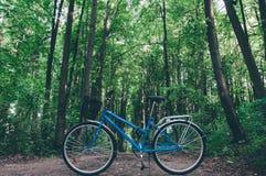 没有人的蓝色葡萄酒自行车在森林里 库存照片