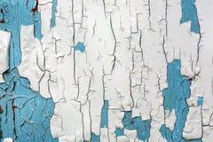 没有修理的白色和蓝色墙壁 有历史绘画的被放弃的房子 在裂化的情况的生锈的背景 免版税图库摄影
