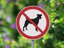 没有允许的狗 库存照片