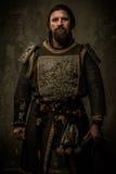没有剑的骑士 免版税库存照片