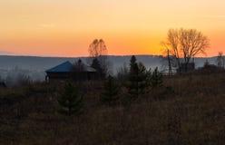 没有叶子的树在日落的一个领域 库存图片