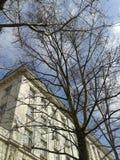 没有叶子的槭树在三层的房子前面在与一些朵白色云彩的蓝天下 免版税库存图片