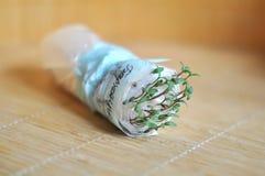 没有地面的生长幼木 免版税图库摄影