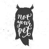 没有您的在猫头鹰的宠物字法 库存照片