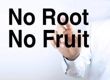 没有根没有果子 免版税库存图片