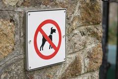 没有狗 库存图片