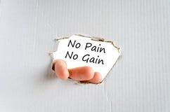 没有痛苦没有获取文本概念 免版税库存图片