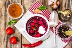没有肉的食物 素食蔬菜汤用甜菜根 免版税库存照片