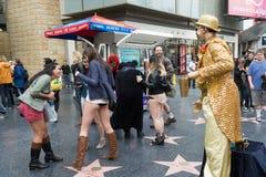 没有裤子的妇女在期间的好莱坞 免版税库存照片