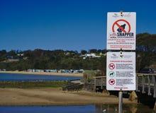 没有酒精在海滩的没有狗标志 库存图片