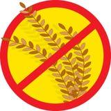 没有麦子 免版税库存照片