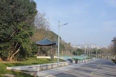 没有任何一个的城市绿色方式在一个晴朗的下午 免版税库存图片