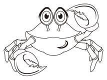 没色的螃蟹 免版税图库摄影