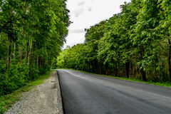 沥青乡下公路 库存照片