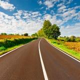 沥青详细形成路正方形人员结构 免版税图库摄影