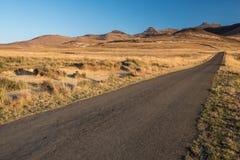 沥青路在干燥草原 免版税库存图片