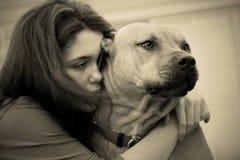 沮丧的狗女孩哀伤青少年 免版税库存照片
