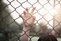沮丧,麻烦、帮助和机会 在链子链接篱芭的绝望的妇女培养手请求帮忙 免版税库存图片