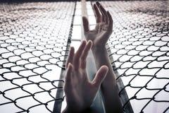 沮丧,麻烦、帮助和机会 培养移交链子链接篱芭的绝望的妇女请求帮忙 免版税图库摄影