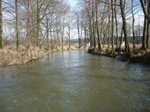 河Úhlava在春天在Pilsen  免版税库存照片
