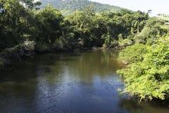 河、森林和山 免版税库存图片