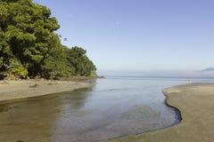 河、森林和海滩 免版税库存照片