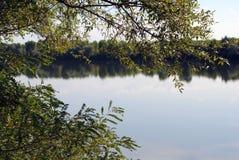 河、绿草和结构树 免版税库存图片
